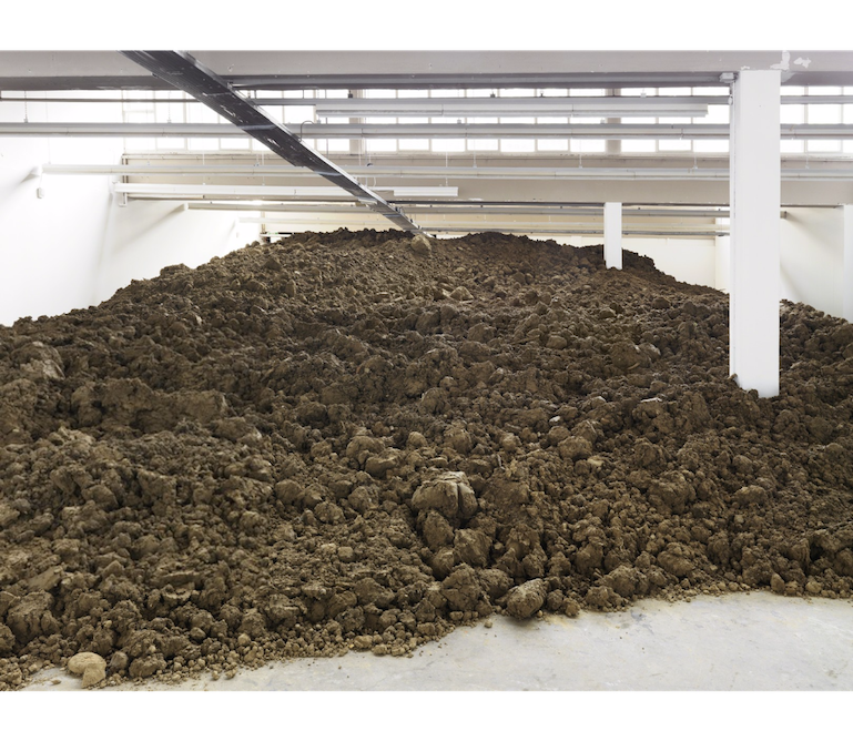 Lara Almarcegui, Excavation from Basel, 2015; installation view at the Kunsthaus Baselland, 2015; photo by Serge Hasenböhler