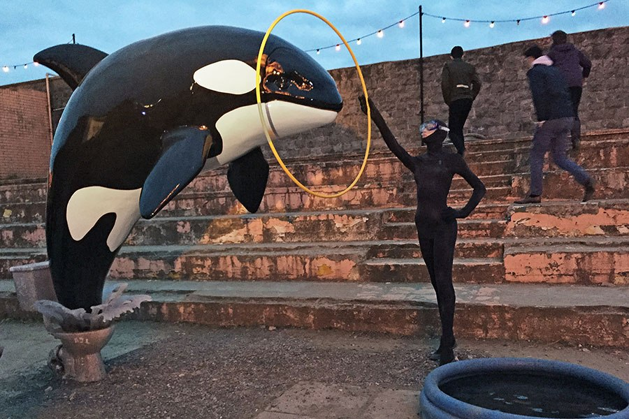 A killer whale jumps from a toilet into a baby pool. Installation view of a work by Banksy, Dismaland, 2015; photo by Carrie Seim for Architectural Digest