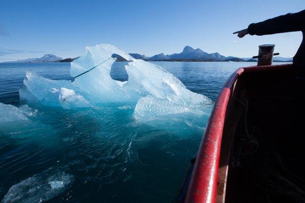 Harvesting ice floating in Nuup Kangerlua, Greenland; photo by Jørgen Chemnitz © 2015 Ólafur Elíasson